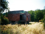 Sajonara Findžanović