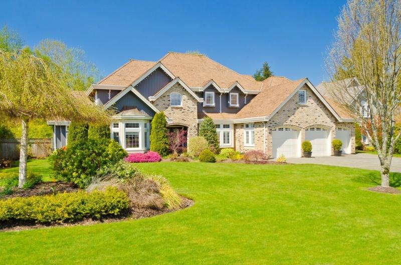 Dvorište, bašta, vrt - Uređenje i održavanje