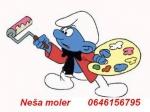 Nesa Popov