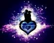 Magija Ljubavna